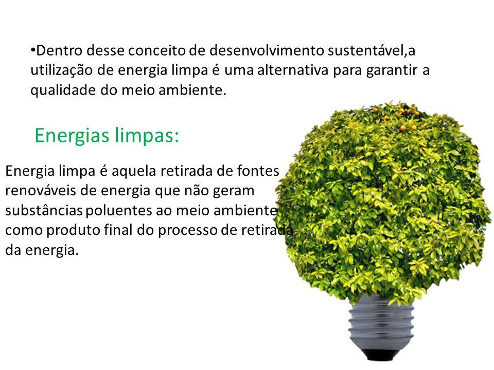 Dentro desse conceito de desenvolvimento sustentável,a utilização de energia limpa é uma alternativa para garantir a qualidade do meio ambiente. Energ