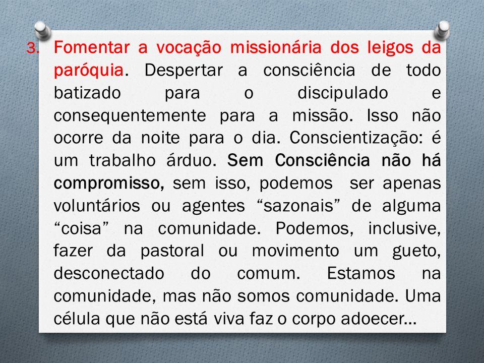3.Fomentar a vocação missionária dos leigos da paróquia.