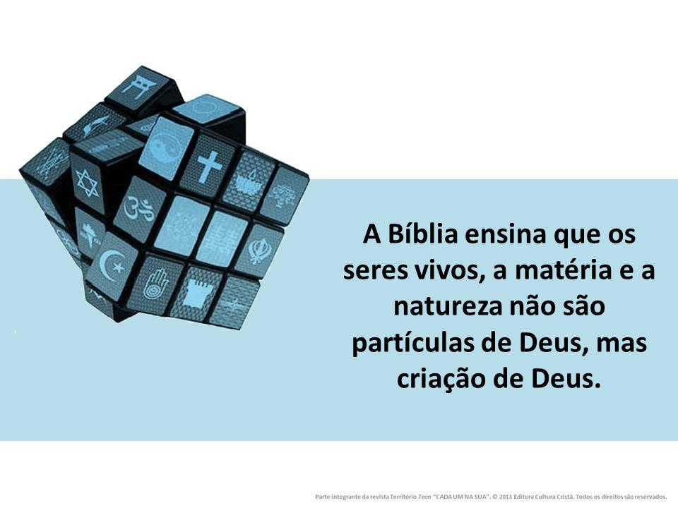 A Bíblia ensina que os seres vivos, a matéria e a natureza não são partículas de Deus, mas criação de Deus.