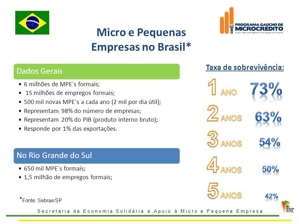 Micro e Pequenas Empresas no Brasil* Secretaria da Economia Solidária e Apoio à Micro e Pequena Empresa Taxa de sobrevivência: Dados Gerais 6 milhões