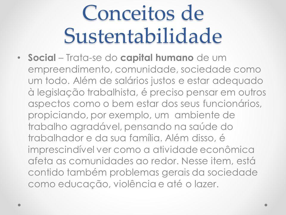 Conceitos de Sustentabilidade Social – Trata-se do capital humano de um empreendimento, comunidade, sociedade como um todo.