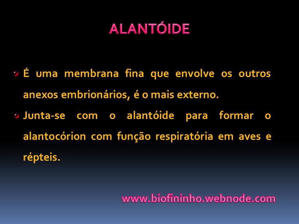 É uma membrana fina que envolve os outros anexos embrionários, é o mais externo. Junta-se com o alantóide para formar o alantocórion com função respir