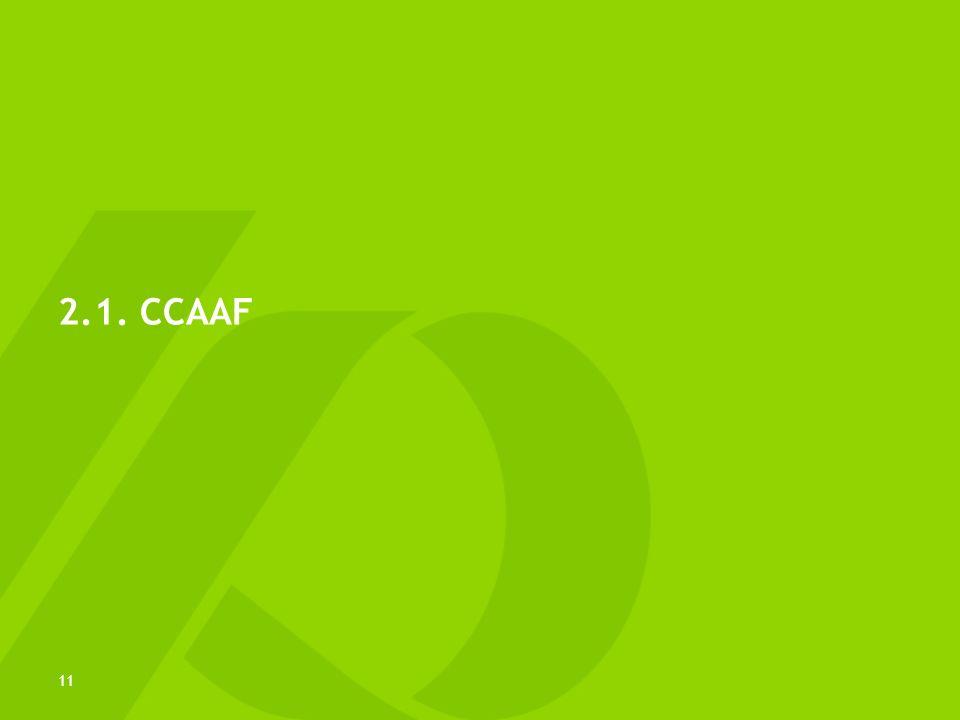 2.1. CCAAF 11