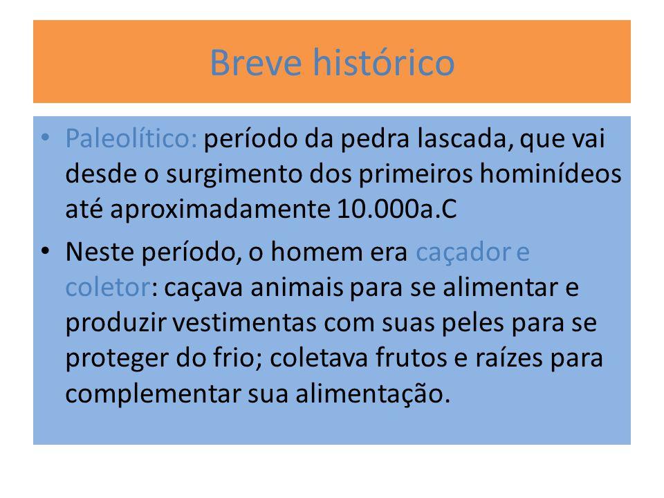 Breve histórico Paleolítico: período da pedra lascada, que vai desde o surgimento dos primeiros hominídeos até aproximadamente 10.000a.C Neste período
