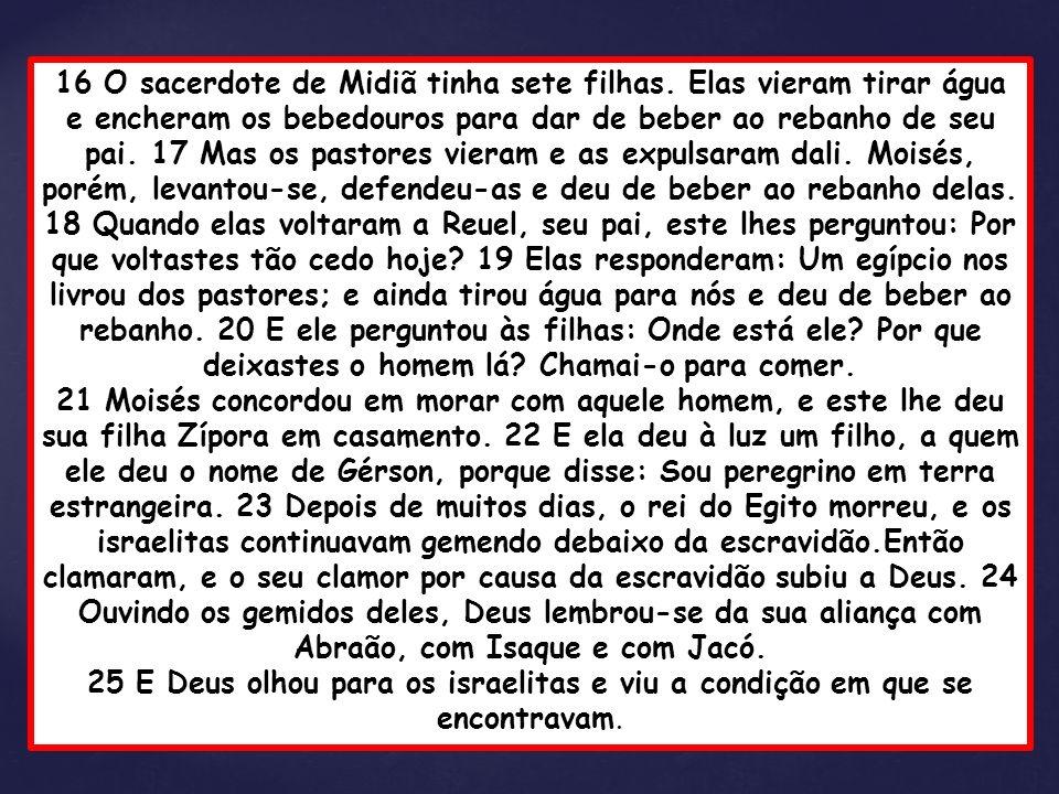 16 O sacerdote de Midiã tinha sete filhas. Elas vieram tirar água e encheram os bebedouros para dar de beber ao rebanho de seu pai. 17 Mas os pastores