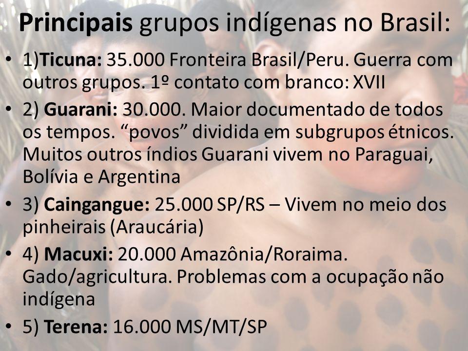 Principais grupos indígenas no Brasil: 1)Ticuna: 35.000 Fronteira Brasil/Peru. Guerra com outros grupos. 1º contato com branco: XVII 2) Guarani: 30.00