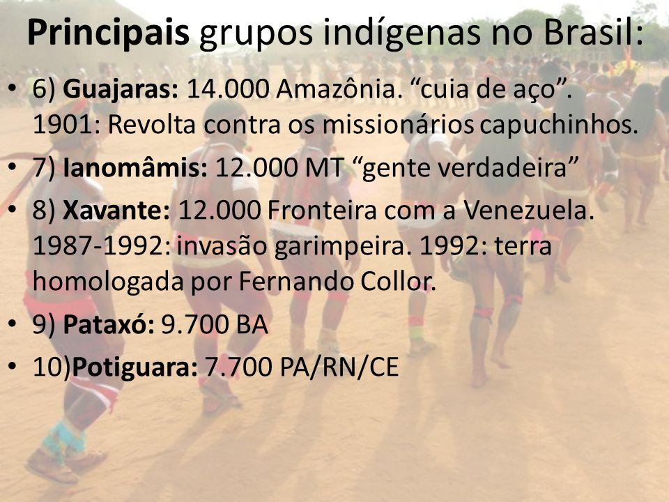 Principais grupos indígenas no Brasil: 6) Guajaras: 14.000 Amazônia. cuia de aço. 1901: Revolta contra os missionários capuchinhos. 7) Ianomâmis: 12.0