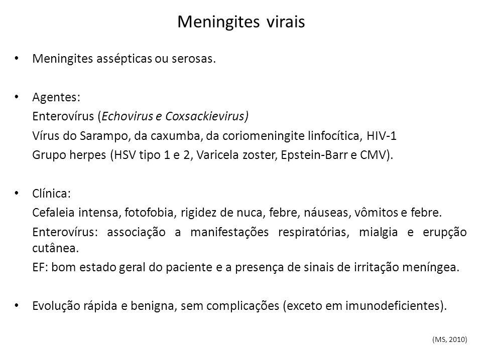 Meningites virais Meningites assépticas ou serosas. Agentes: Enterovírus (Echovirus e Coxsackievirus) Vírus do Sarampo, da caxumba, da coriomeningite