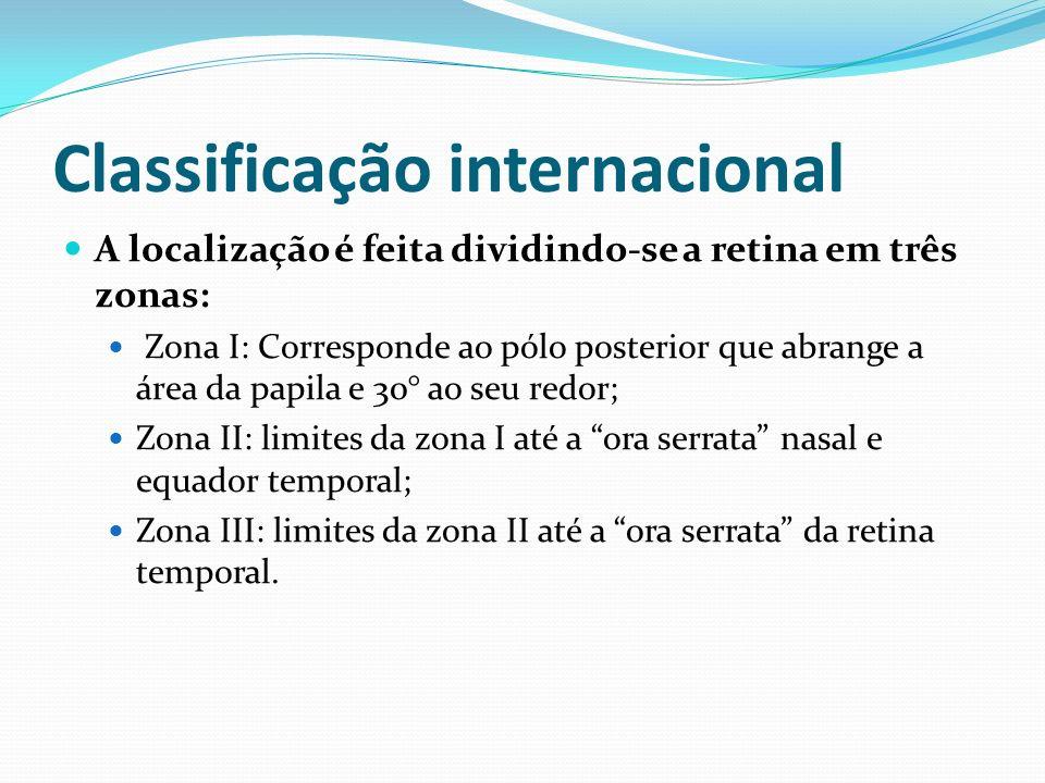 Retinografia e representação esquemática do fundo do olho normal Fonte: The International Classification of Retinopathy of Prematurity Revisited (ICROP-revisited) International Committee for the Classification of Retinopathy of Prematurity.