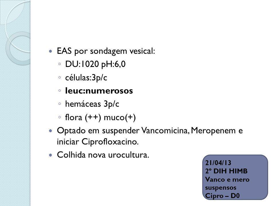 EAS por sondagem vesical: DU:1020 pH:6,0 células:3p/c leuc:numerosos hemáceas 3p/c flora (++) muco(+) Optado em suspender Vancomicina, Meropenem e ini