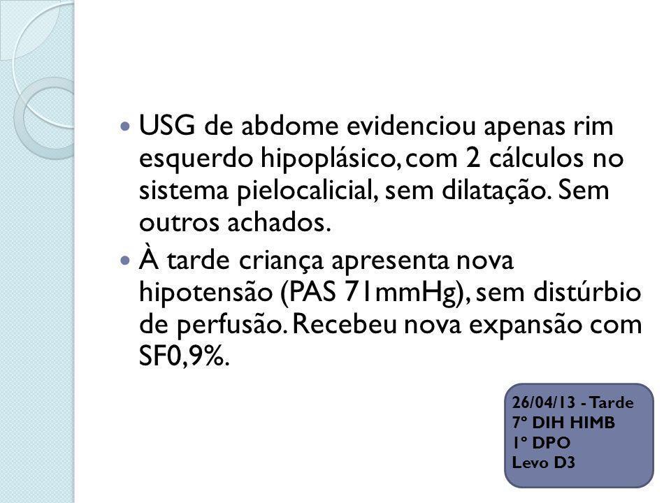 USG de abdome evidenciou apenas rim esquerdo hipoplásico, com 2 cálculos no sistema pielocalicial, sem dilatação. Sem outros achados. À tarde criança