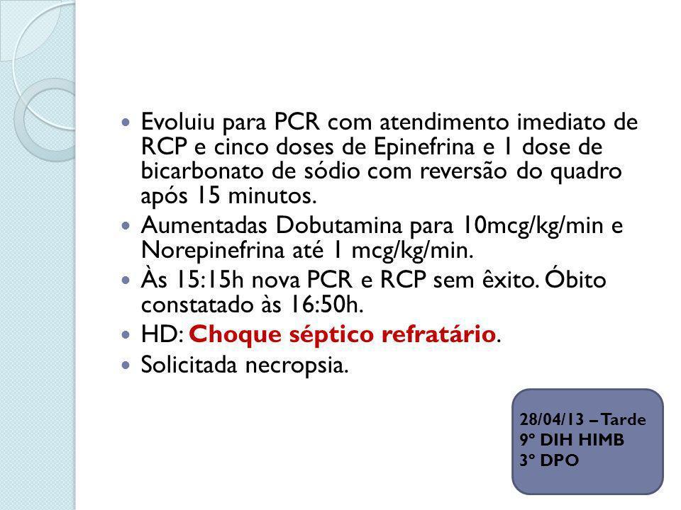 Evoluiu para PCR com atendimento imediato de RCP e cinco doses de Epinefrina e 1 dose de bicarbonato de sódio com reversão do quadro após 15 minutos.