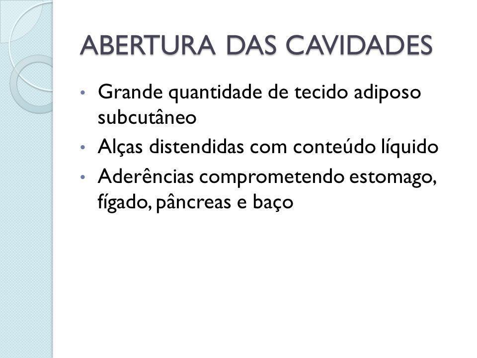 ABERTURA DAS CAVIDADES Grande quantidade de tecido adiposo subcutâneo Alças distendidas com conteúdo líquido Aderências comprometendo estomago, fígado