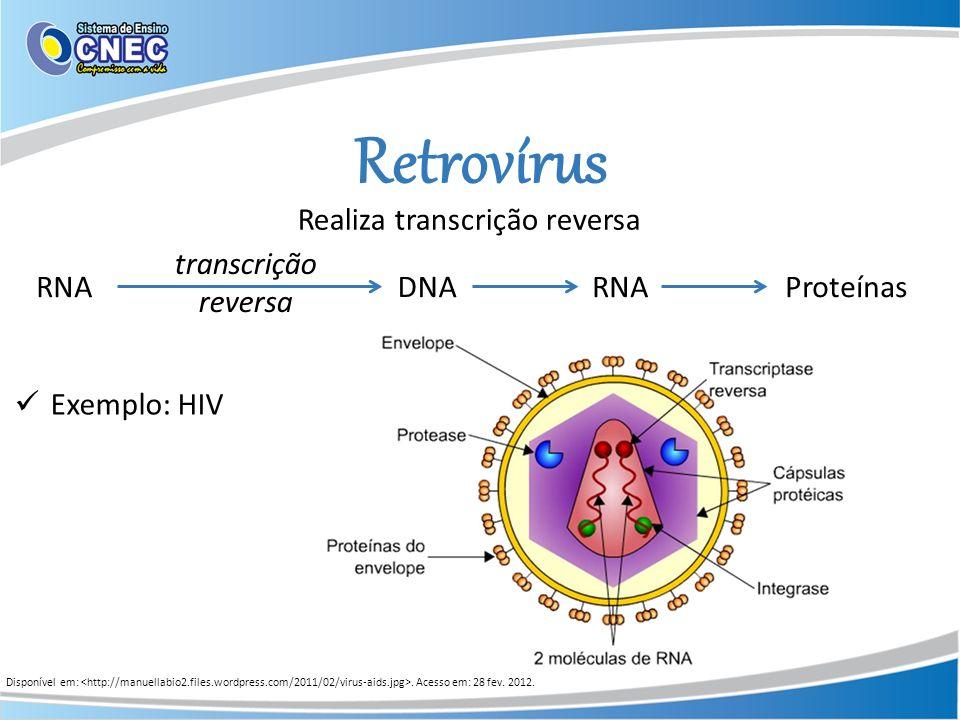Retrovírus Disponível em:. Acesso em: 28 fev. 2012. Realiza transcrição reversa RNADNAProteínas transcrição reversa RNA Exemplo: HIV