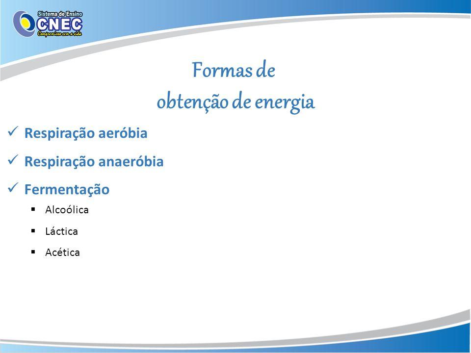 Formas de obtenção de energia Respiração aeróbia Respiração anaeróbia Fermentação Alcoólica Láctica Acética