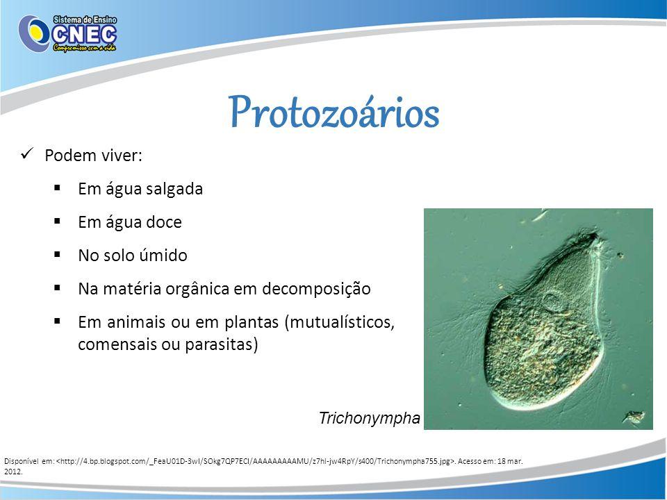 Protozoários Podem viver: Em água salgada Em água doce No solo úmido Na matéria orgânica em decomposição Em animais ou em plantas (mutualísticos, come