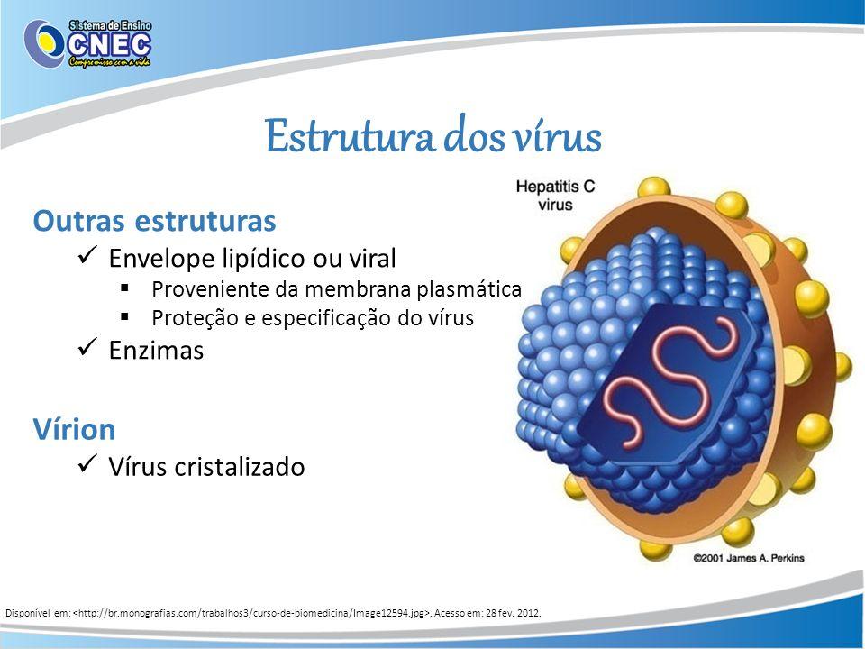 Estrutura dos vírus Outras estruturas Envelope lipídico ou viral Proveniente da membrana plasmática Proteção e especificação do vírus Enzimas Vírion V