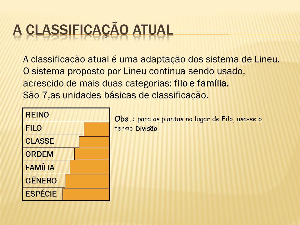 A classificação atual é uma adaptação dos sistema de Lineu. O sistema proposto por Lineu continua sendo usado, acrescido de mais duas categorias: filo