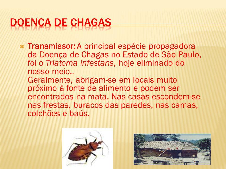 Transmissor: A principal espécie propagadora da Doença de Chagas no Estado de São Paulo, foi o Triatoma infestans, hoje eliminado do nosso meio.. Gera