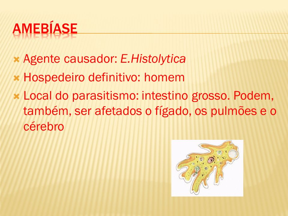 Agente causador: E.Histolytica Hospedeiro definitivo: homem Local do parasitismo: intestino grosso. Podem, também, ser afetados o fígado, os pulmões e