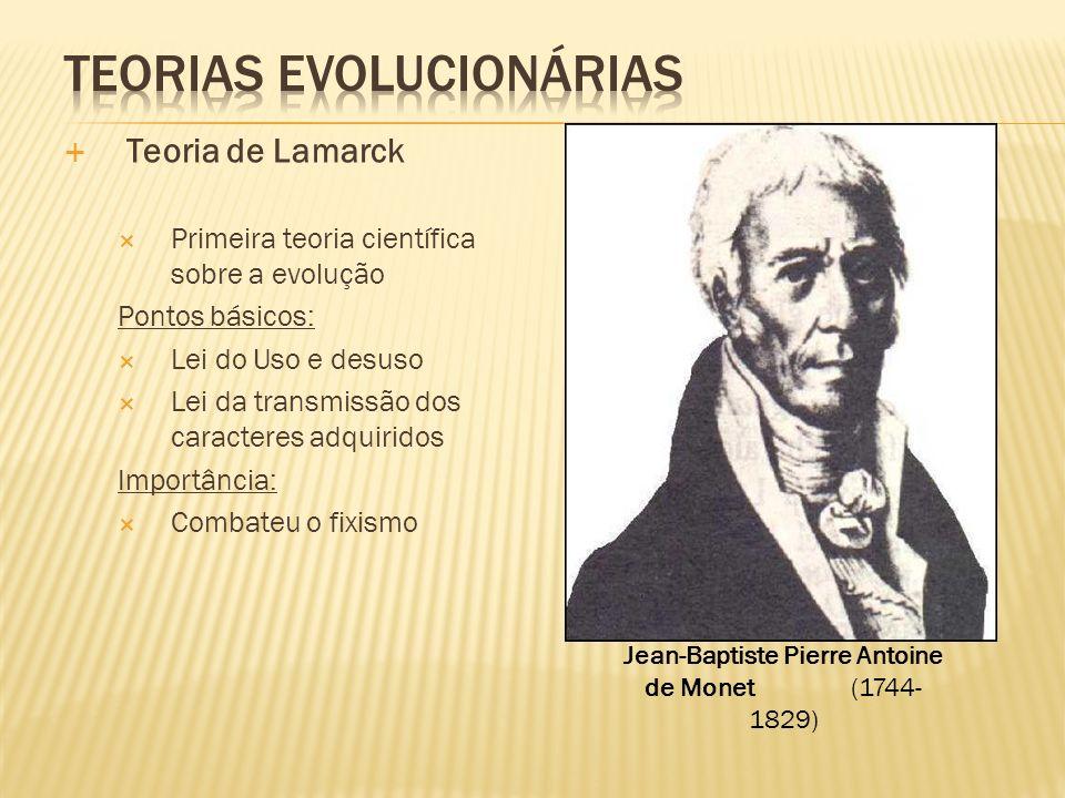 Teoria de Lamarck Primeira teoria científica sobre a evolução Pontos básicos: Lei do Uso e desuso Lei da transmissão dos caracteres adquiridos Importâ