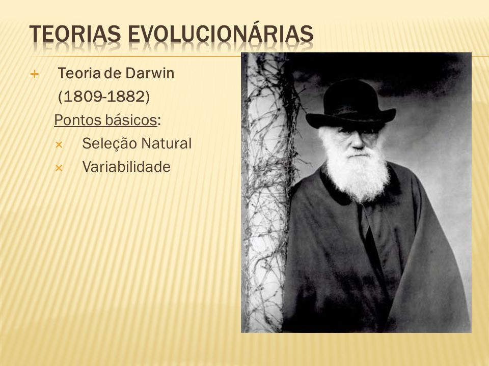Teoria de Darwin (1809-1882) Pontos básicos: Seleção Natural Variabilidade