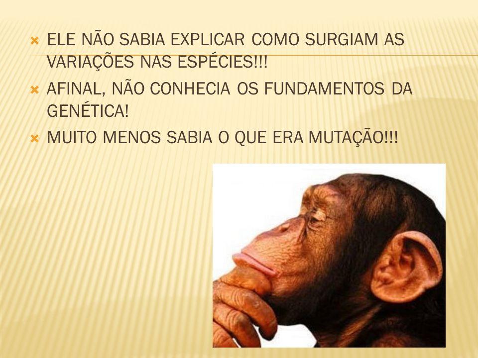 ELE NÃO SABIA EXPLICAR COMO SURGIAM AS VARIAÇÕES NAS ESPÉCIES!!! AFINAL, NÃO CONHECIA OS FUNDAMENTOS DA GENÉTICA! MUITO MENOS SABIA O QUE ERA MUTAÇÃO!