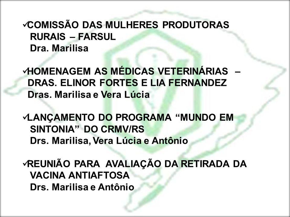 REUNIÃO SOBRE CAVALGADA DO MAR (3) Drs.