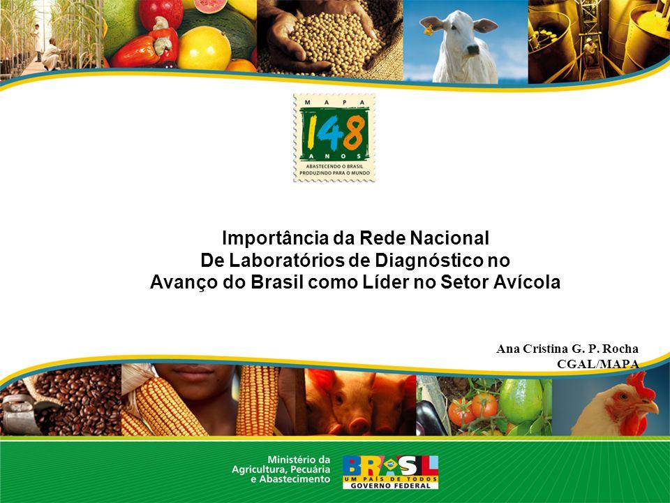 Importância da Rede Nacional De Laboratórios de Diagnóstico no Avanço do Brasil como Líder no Setor Avícola Ana Cristina G. P. Rocha CGAL/MAPA