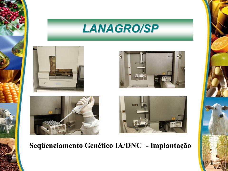 LANAGRO/SP Seqüenciamento Genético IA/DNC - Implantação