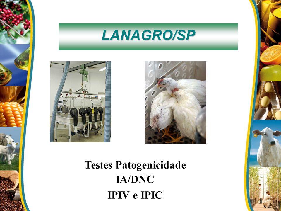 LANAGRO/SP Testes Patogenicidade IA/DNC IPIV e IPIC
