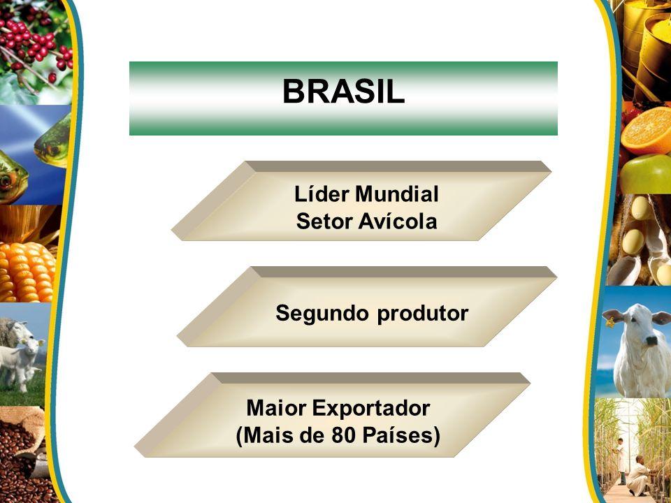 BRASIL Líder Mundial Setor Avícola Maior Exportador (Mais de 80 Países) Segundo produtor