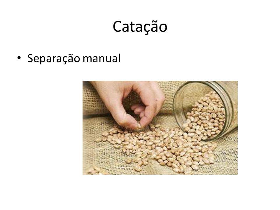 Catação Separação manual
