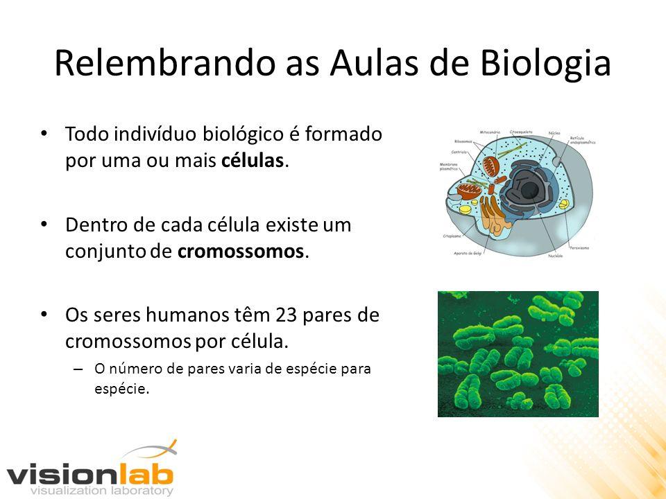Relembrando as Aulas de Biologia Todo indivíduo biológico é formado por uma ou mais células. Dentro de cada célula existe um conjunto de cromossomos.