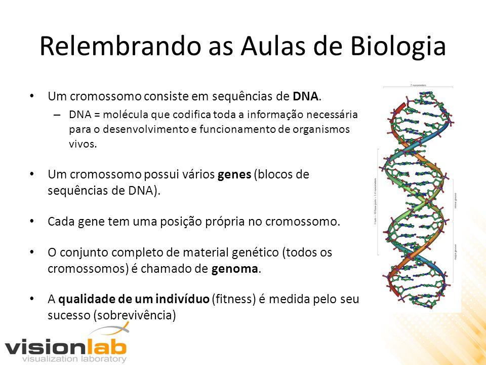 Relembrando as Aulas de Biologia Um cromossomo consiste em sequências de DNA. – DNA = molécula que codifica toda a informação necessária para o desenv