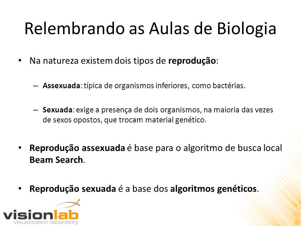Algoritmos Genéticos Nos algoritmos genéticos as populações de indivíduos são criadas e submetidas a operadores genéticos.