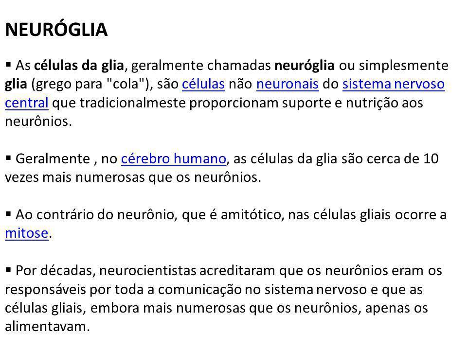NEURÓGLIA As células da glia, geralmente chamadas neuróglia ou simplesmente glia (grego para cola ), são células não neuronais do sistema nervoso central que tradicionalmeste proporcionam suporte e nutrição aos neurônios.célulasneuronaissistema nervoso central Geralmente, no cérebro humano, as células da glia são cerca de 10 vezes mais numerosas que os neurônios.cérebro humano Ao contrário do neurônio, que é amitótico, nas células gliais ocorre a mitose.