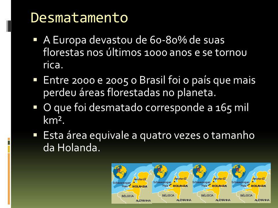 A Europa devastou de 60-80% de suas florestas nos últimos 1000 anos e se tornou rica. Entre 2000 e 2005 o Brasil foi o país que mais perdeu áreas flor