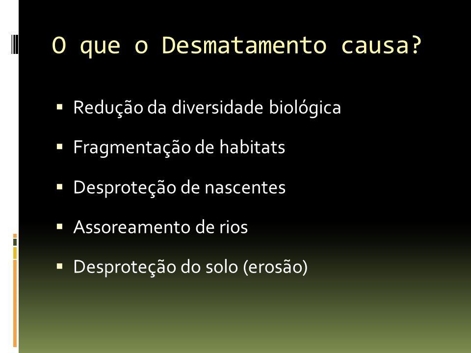 O que o Desmatamento causa? Redução da diversidade biológica Fragmentação de habitats Desproteção de nascentes Assoreamento de rios Desproteção do sol