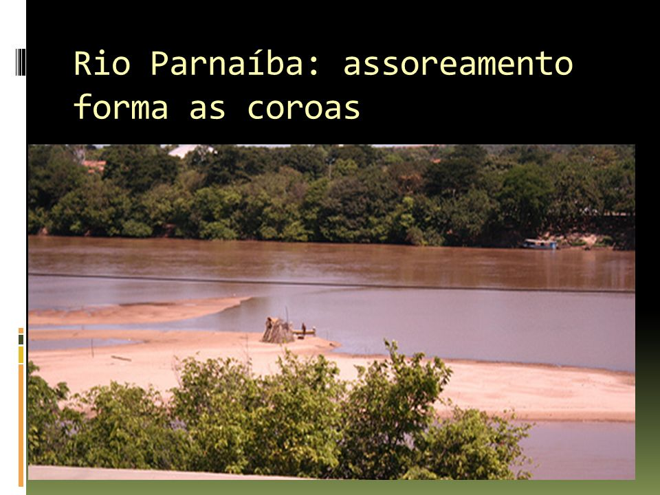 Rio Parnaíba: assoreamento forma as coroas