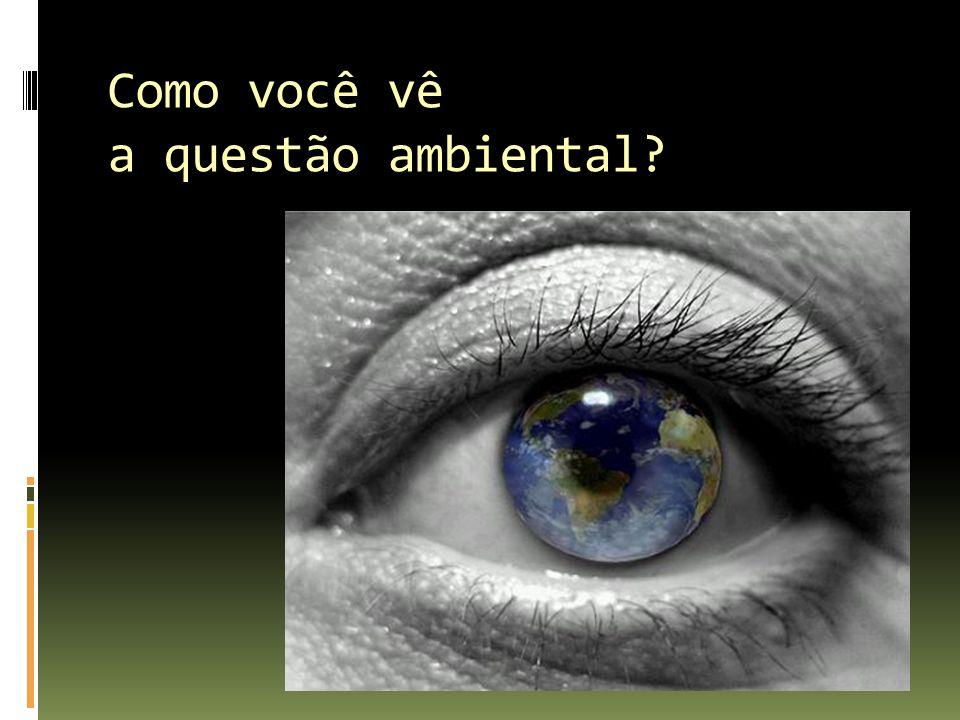 Como você vê a questão ambiental?