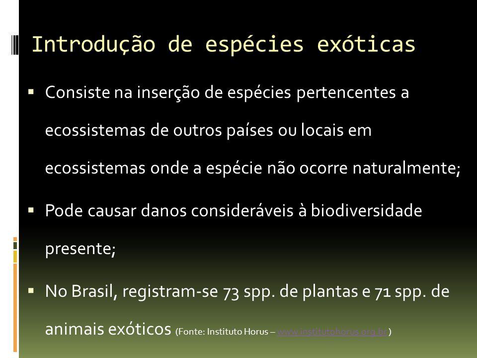 Introdução de espécies exóticas Consiste na inserção de espécies pertencentes a ecossistemas de outros países ou locais em ecossistemas onde a espécie