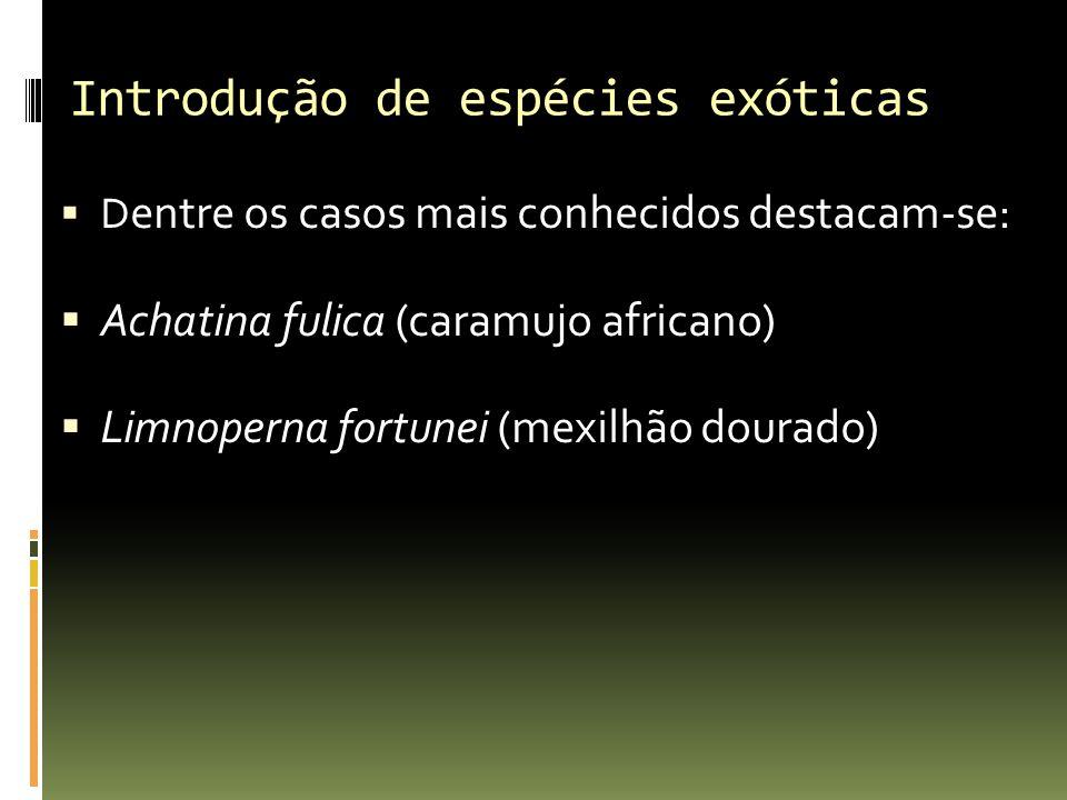 Introdução de espécies exóticas D entre os casos mais conhecidos destacam-se: Achatina fulica (caramujo africano) Limnoperna fortunei (mexilhão dourad