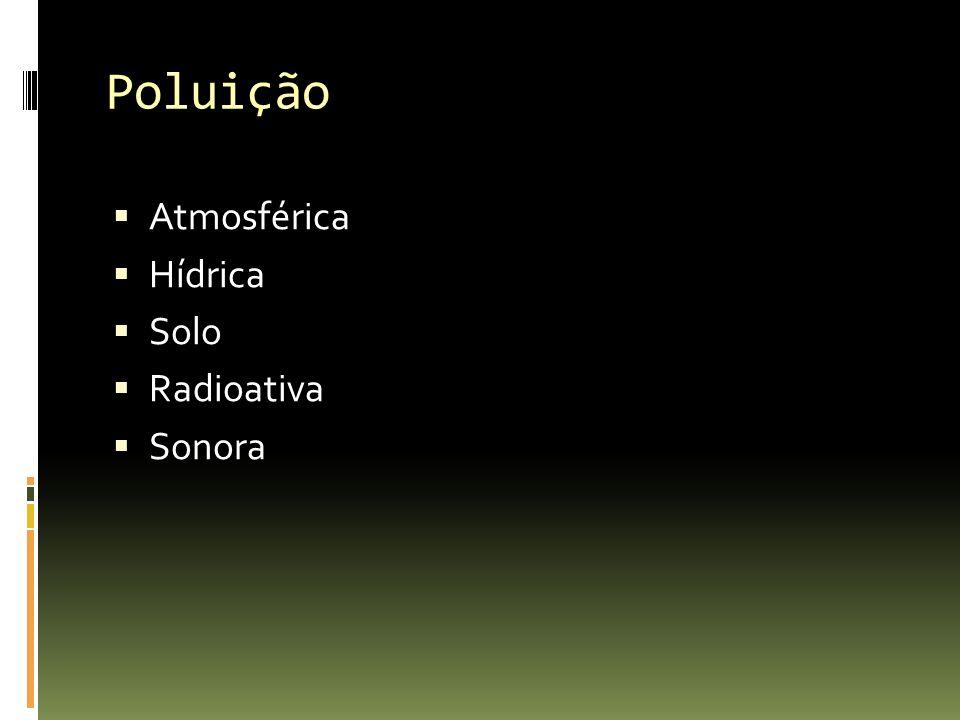 Poluição Atmosférica Hídrica Solo Radioativa Sonora