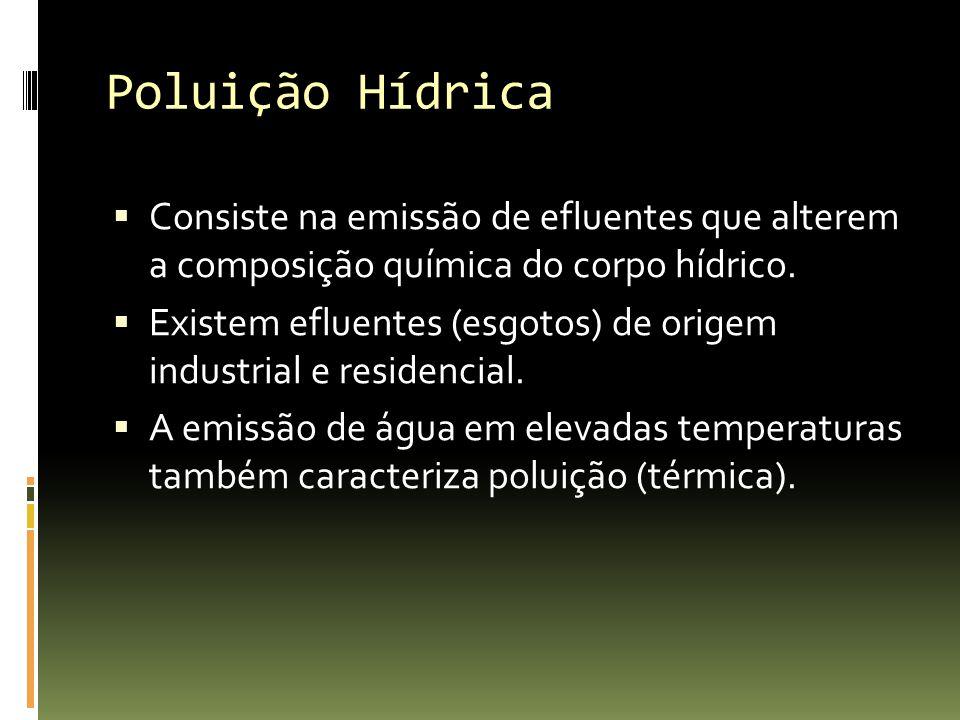 Poluição Hídrica Consiste na emissão de efluentes que alterem a composição química do corpo hídrico. Existem efluentes (esgotos) de origem industrial