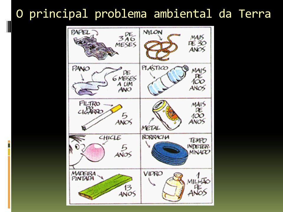 O principal problema ambiental da Terra