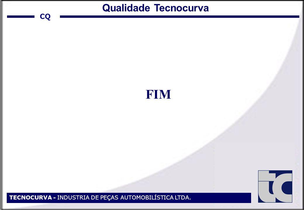 TECNOCURVA - INDUSTRIA DE PEÇAS AUTOMOBILÍSTICA LTDA. FIM CQ Qualidade Tecnocurva