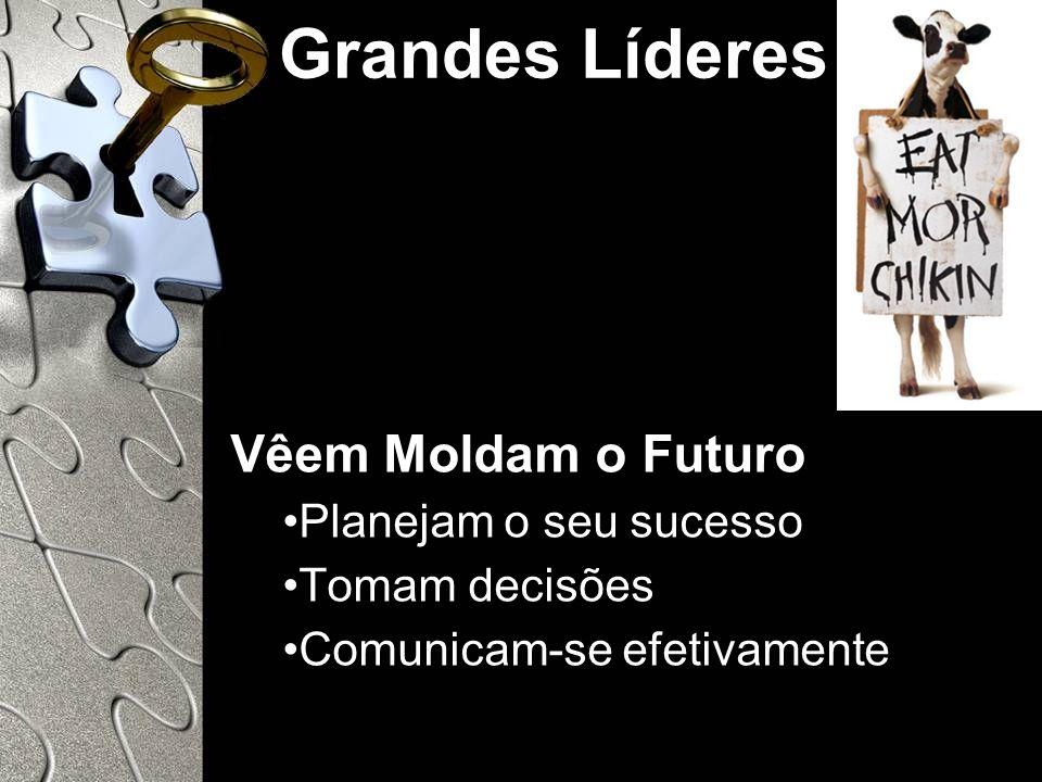 Grandes Líderes Vêem Moldam o Futuro Planejam o seu sucesso Tomam decisões Comunicam-se efetivamente