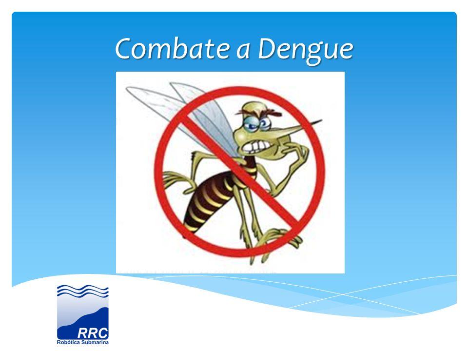 Introdução A dengue é um dos principais problemas de saúde pública no mundo.