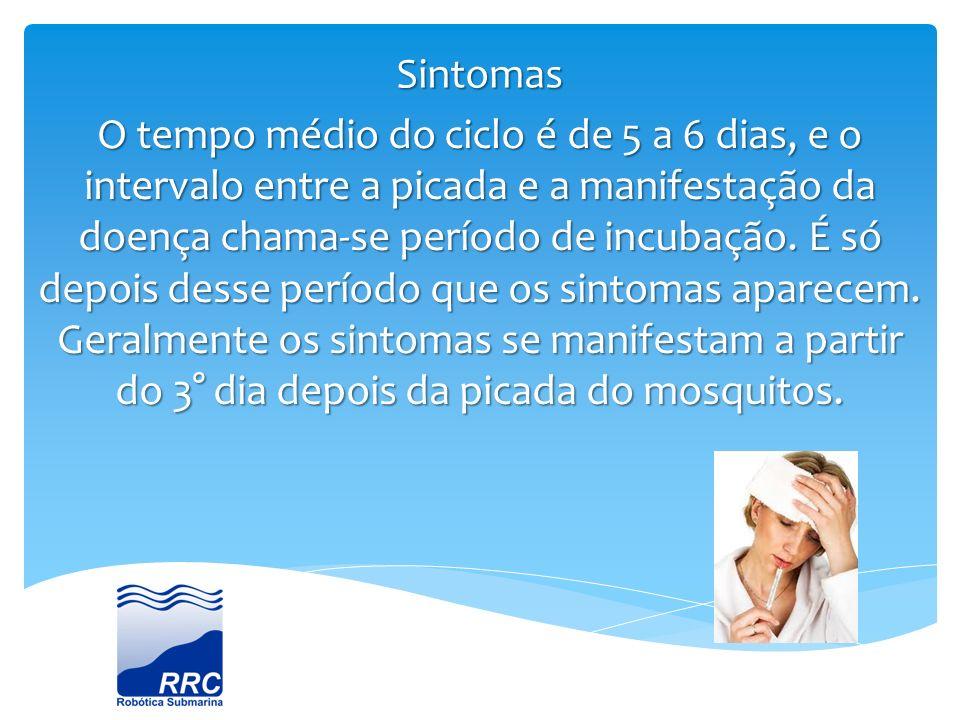 Sintomas O tempo médio do ciclo é de 5 a 6 dias, e o intervalo entre a picada e a manifestação da doença chama-se período de incubação. É só depois de